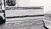 Ward-Perkins Archive, BSR (Sopr. DTV 306 Leica)