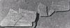 Ward-Perkins Archive, BSR (BSR 48.XXIV.35)