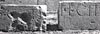 Ward-Perkins Archive, BSR (Sopr. DLM 255 Lastre)