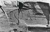 Ward-Perkins Archive, BSR (BSR 48.XVI.29)